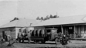 De Bortoli Wines in 1930, orgins at Bilbul NSW Australia